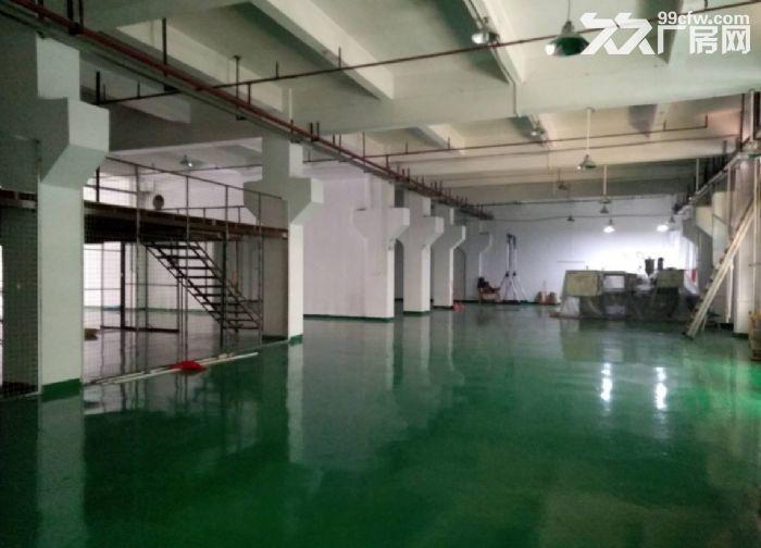 广州白云金沙洲新出厂房一楼800平方(现成装修)-图(3)