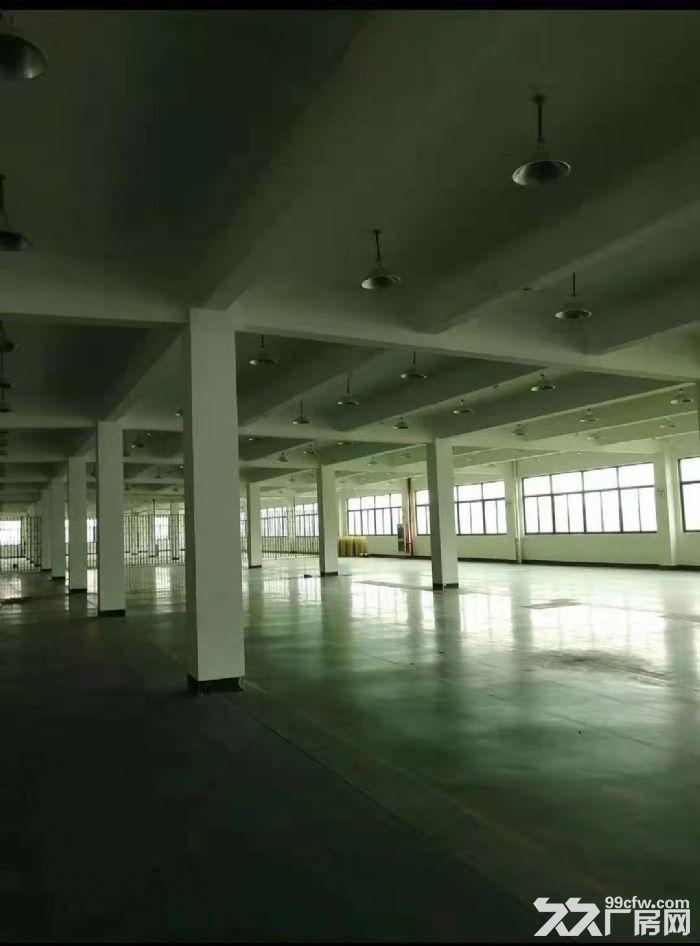 出租海沧新阳工业区1楼2800平带行车,4楼5200平-图(3)