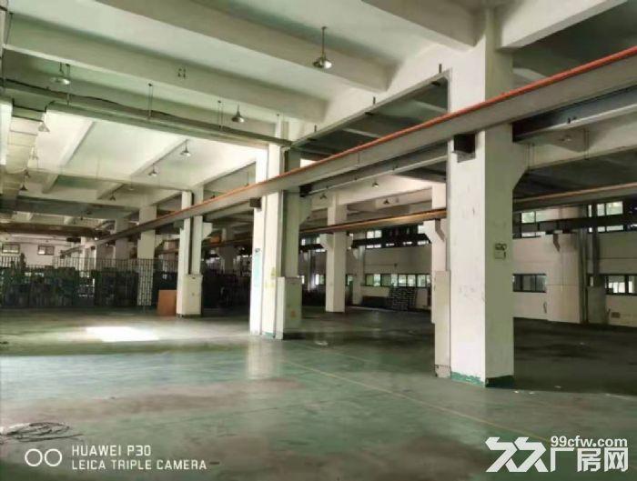 出租海沧新阳工业区1楼2800平带行车,4楼5200平-图(2)