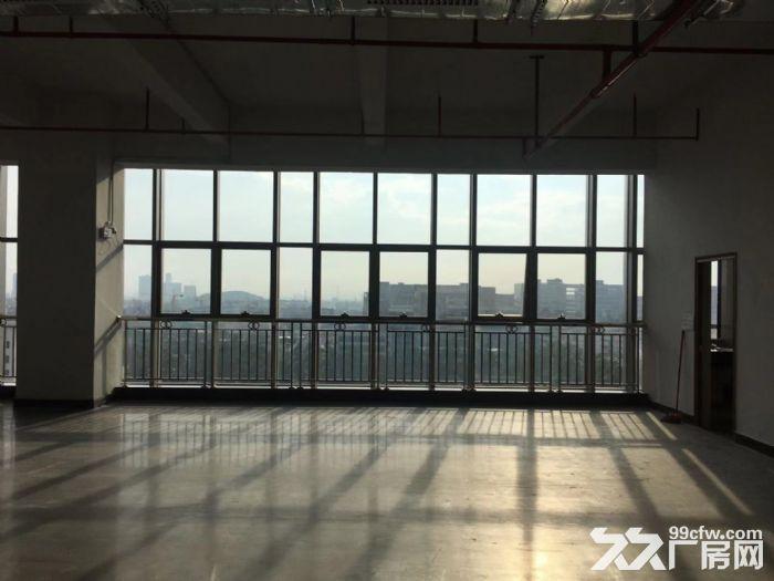 张槎新式楼层仓库、物流电商、加工仓库-图(1)