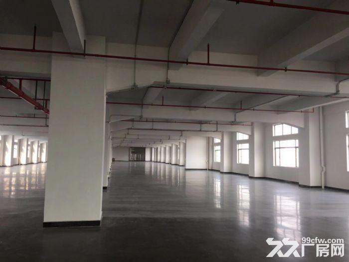 张槎新式楼层仓库、物流电商、加工仓库-图(7)