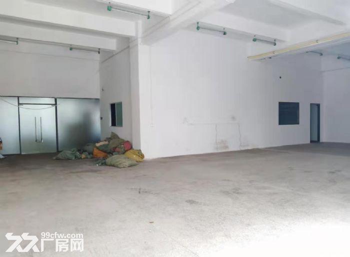 白云黄石新出一楼600平标准厂房出租-图(3)