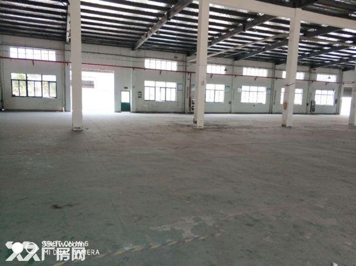 张浦单层厂房350平米,520平米,620平米出租-图(4)