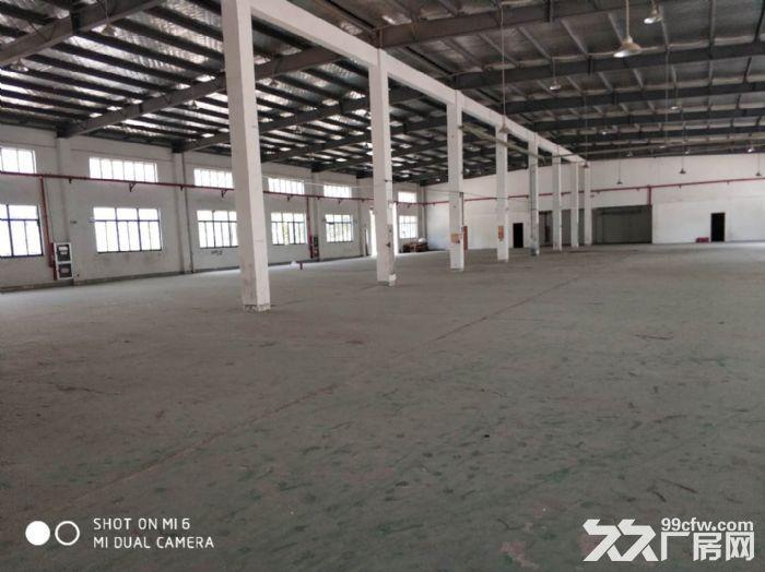 张浦单层厂房350平米,520平米,620平米出租-图(3)