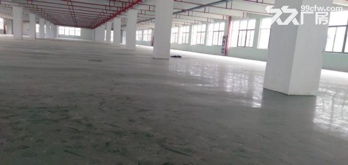高新区2000平独栋标准厂房出租-图(4)