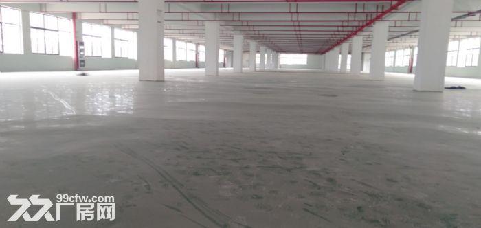 高新区2000平独栋标准厂房出租-图(3)