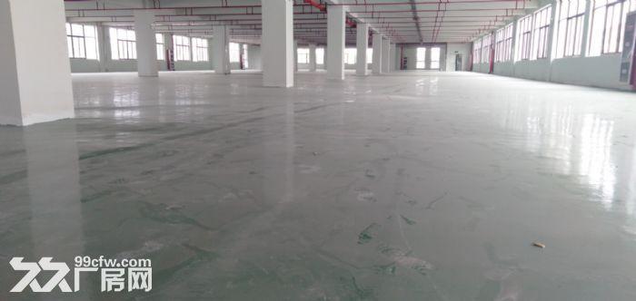 高新区2000平独栋标准厂房出租-图(5)