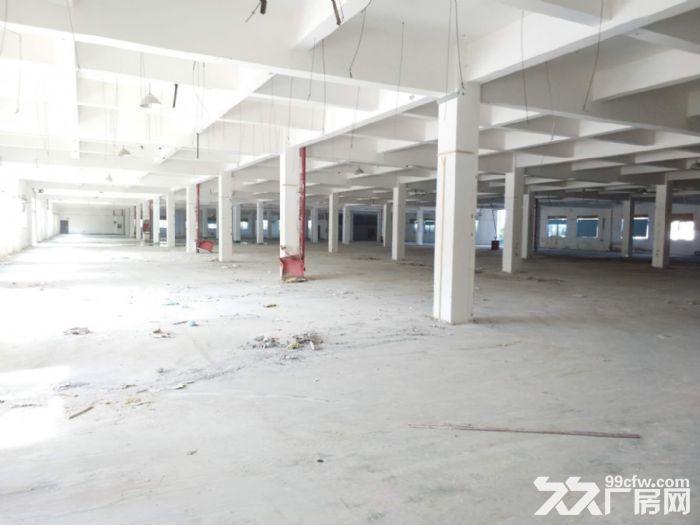 吴中区木渎独栋厂房2400平厂房招租-图(4)