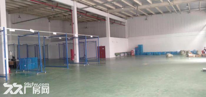 吴中区城南1800平独栋单层厂房出租-图(3)