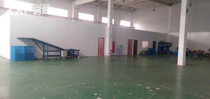 吴中区城南1800平独栋单层厂房出租-图(5)