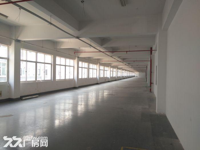 (出租)浦东中环,底楼2000平,楼上3000分租,仓储、研发、电商-图(5)