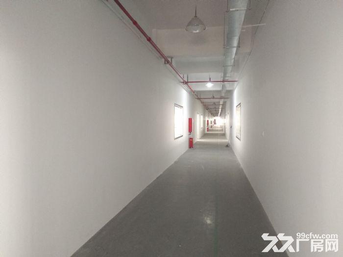 (出租)浦东中环,底楼2000平,楼上3000分租,仓储、研发、电商-图(6)