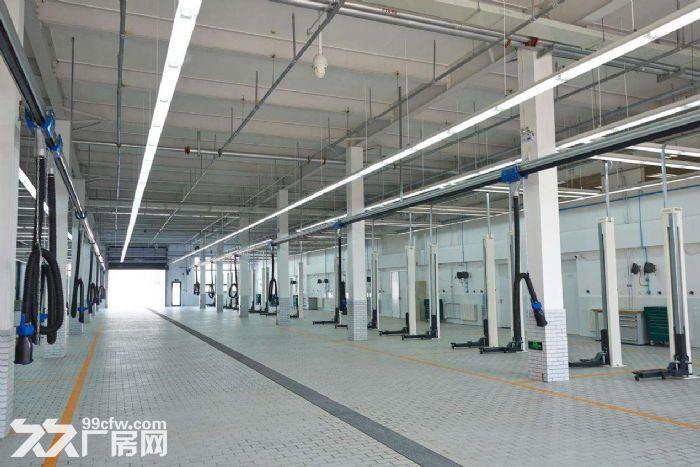 (出租)可环评!独栋独门独院!单层11米可做汽车4S店展厅维修喷漆.6千平可分-图(4)