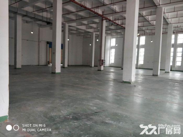 淀山湖木制品厂房出租14500平米,包做家具-图(4)