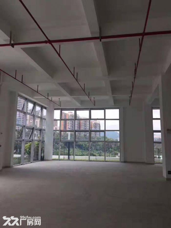 独栋!龙岗布吉2100平厂房出租-图(5)