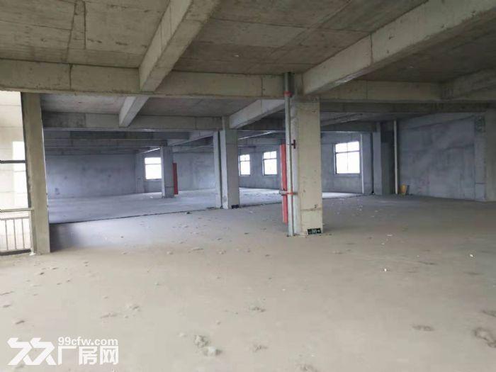 自有产权仪征市新城工业集中区全新7层楼房11300平方出租、出售-图(1)