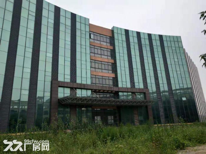 自有产权仪征市新城工业集中区全新7层楼房11300平方出租、出售-图(2)