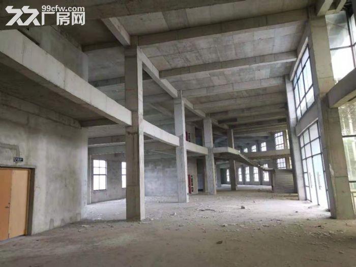 自有产权仪征市新城工业集中区全新7层楼房11300平方出租、出售-图(6)