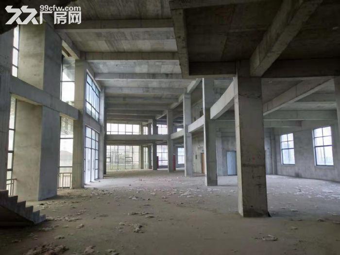 自有产权仪征市新城工业集中区全新7层楼房11300平方出租、出售-图(7)