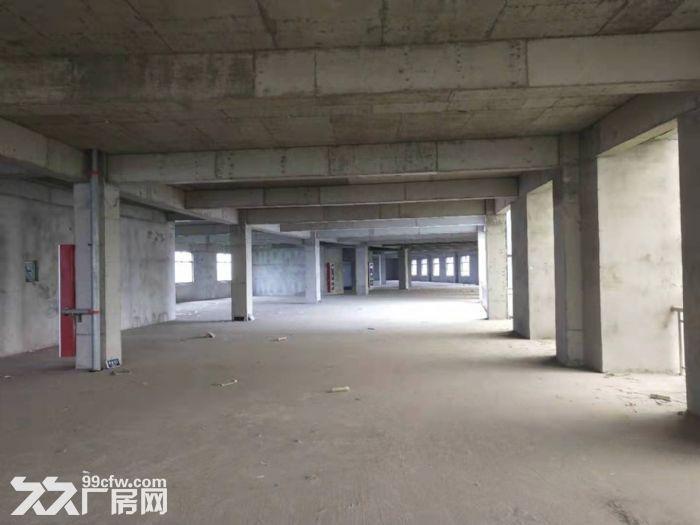 自有产权仪征市新城工业集中区全新7层楼房11300平方出租、出售-图(8)