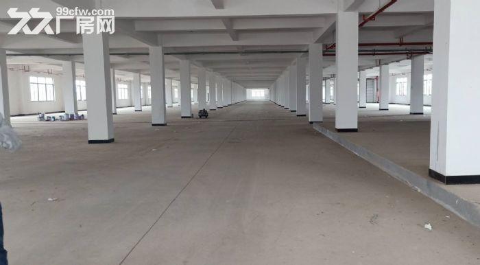 广州海珠区一楼标准1300平,有消防喷淋,可做仓库,模具五金-图(2)