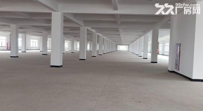 广州海珠区一楼标准1300平,有消防喷淋,可做仓库,模具五金-图(3)
