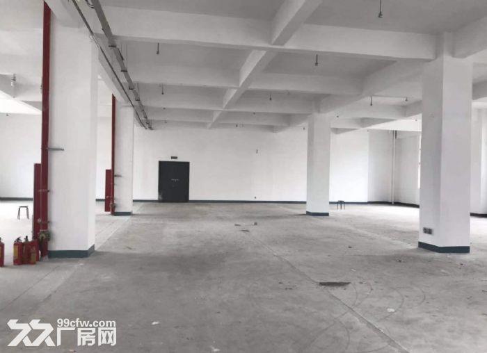 广州荔湾区楼上厂房1000平出租价格优惠-图(3)