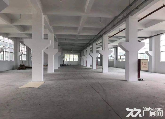 广州荔湾区楼上厂房1000平出租价格优惠-图(1)