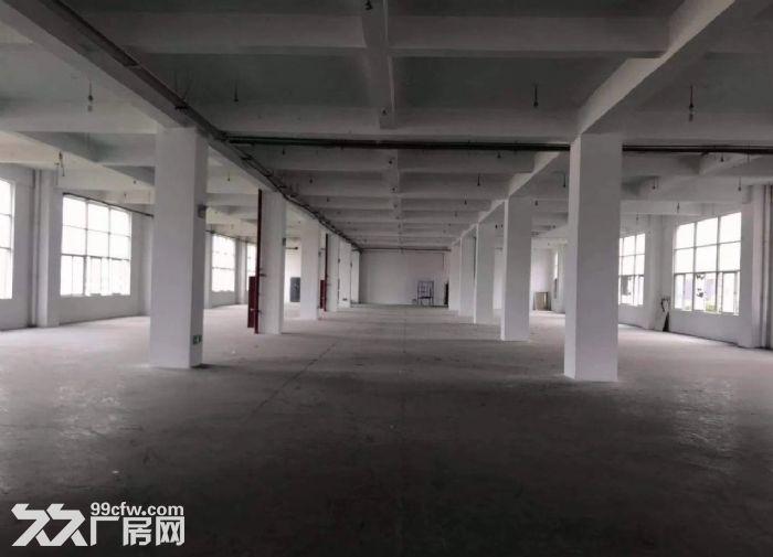 广州荔湾区楼上厂房1000平出租价格优惠-图(4)