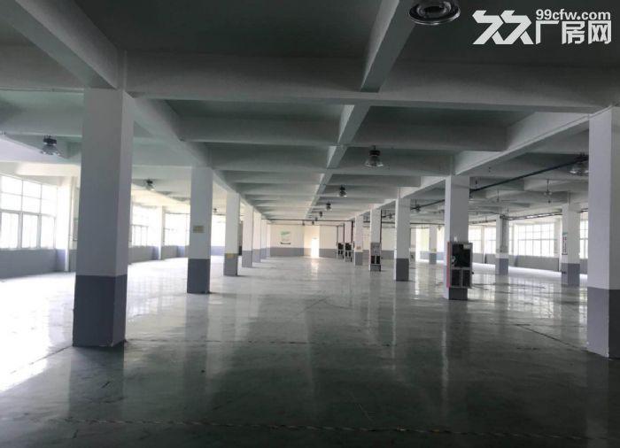 广州金沙洲700方标准厂房出租,水电齐全,地坪漆-图(1)
