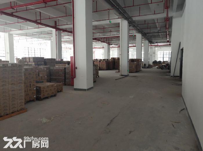 广州番禺厂房出租2000方带装修可环评-图(3)