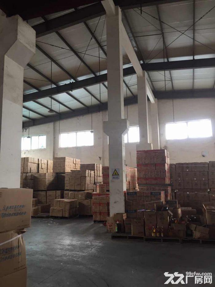 亭林镇2400平方吨独院单层厂房仓库出租,配电足-图(3)