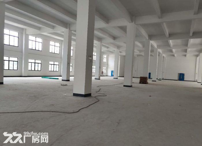 广州增城标准一楼厂房1600平方高6米招租形象好-图(3)