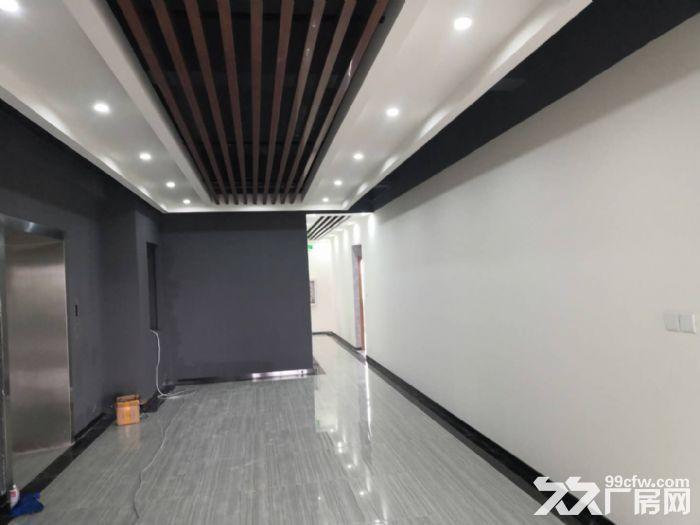 送广告位,精装修车间300平米起租,汽修展厅服装特卖-图(4)