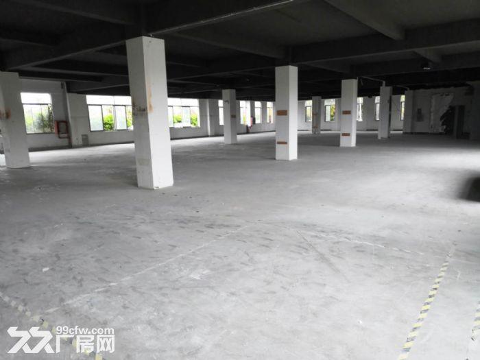 送广告位,精装修车间300平米起租,汽修展厅服装特卖-图(6)