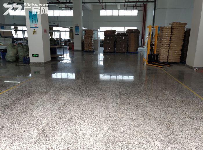 东莞南城标准楼上厂房出租2500方地板金刚砂-图(1)