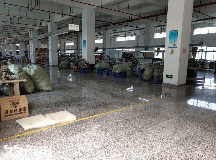 东莞南城标准楼上厂房出租2500方地板金刚砂-图(3)