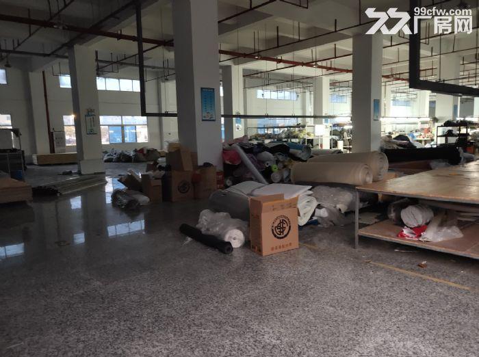 东莞南城标准楼上厂房出租2500方地板金刚砂-图(4)