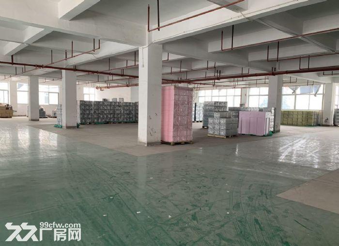 东莞周边楼上标准900方厂房出租方正整洁面积实在-图(1)
