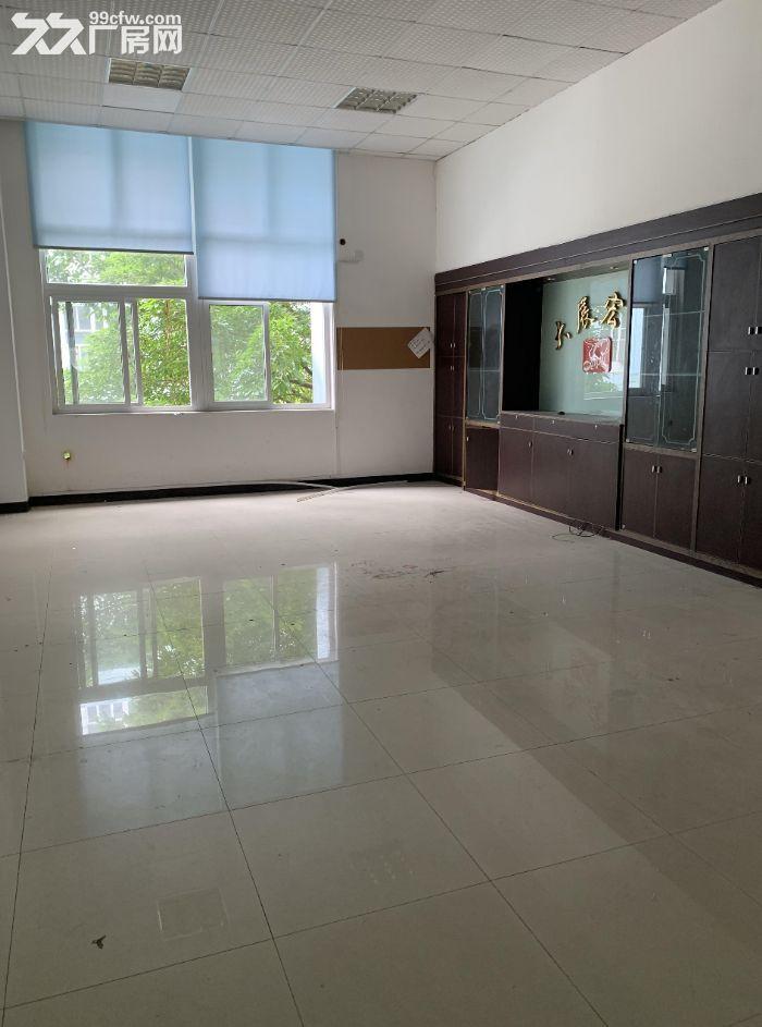 东莞周边楼上标准900方厂房出租方正整洁面积实在-图(3)