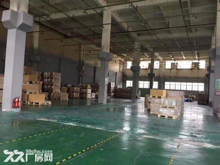 清溪工业园空地大单层标准厂房2200平方出租,12米高-图(3)