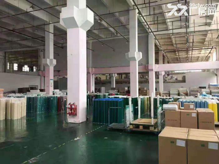 清溪工业园空地大单层标准厂房2200平方出租,12米高-图(5)