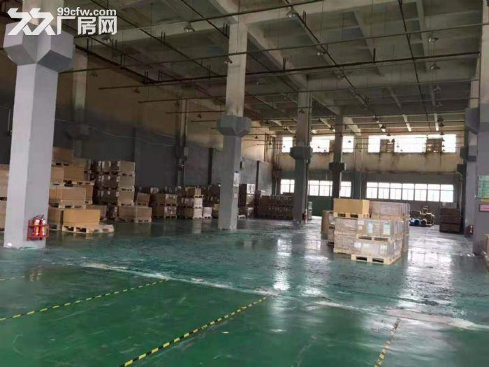 清溪工业园空地大单层标准厂房2200平方出租,12米高-图(6)