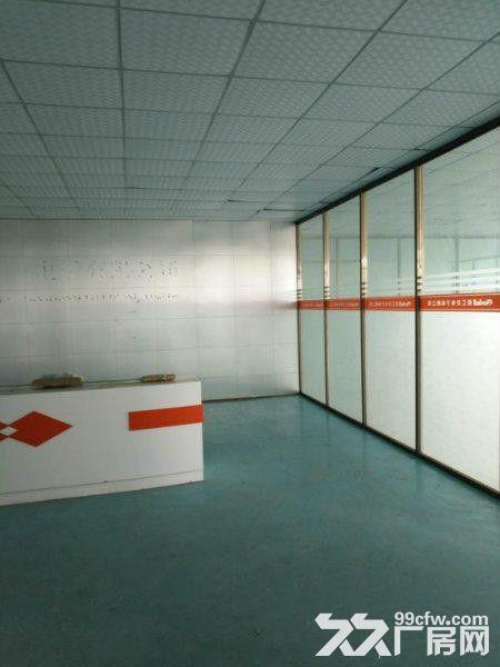 塘厦横塘新出独院2楼厂房850平出租水电办公齐全-图(5)