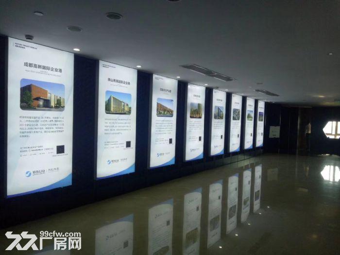 联东U谷胥口200亩稀缺巨制-图(6)