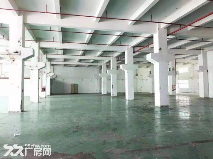 凤岗重工业标准一楼厂房出租2600平方带牛角可办环评-图(2)