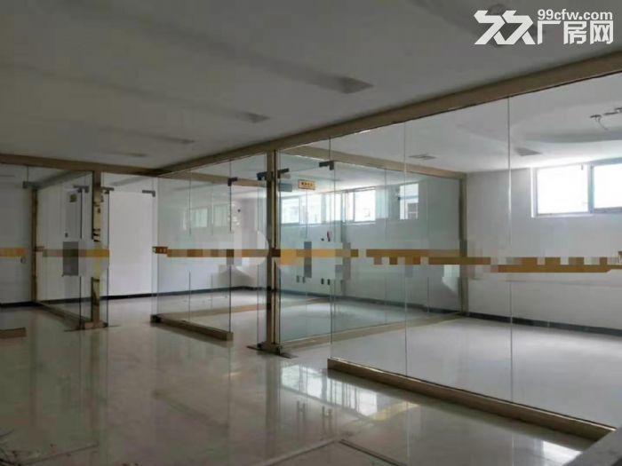 凤岗重工业标准一楼厂房出租2600平方带牛角可办环评-图(4)