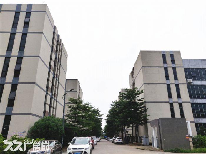 高智能科技园,形象气派,南沙大岗3400平方标准厂房出租-图(2)