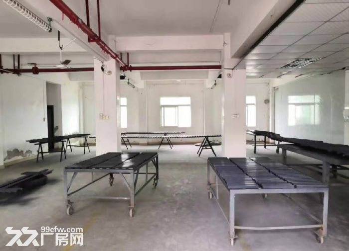 广州海珠新出一楼500平仓库出租,带消防喷淋-图(1)