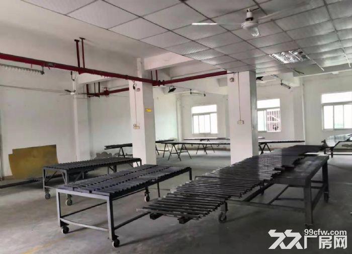 广州海珠新出一楼500平仓库出租,带消防喷淋-图(2)